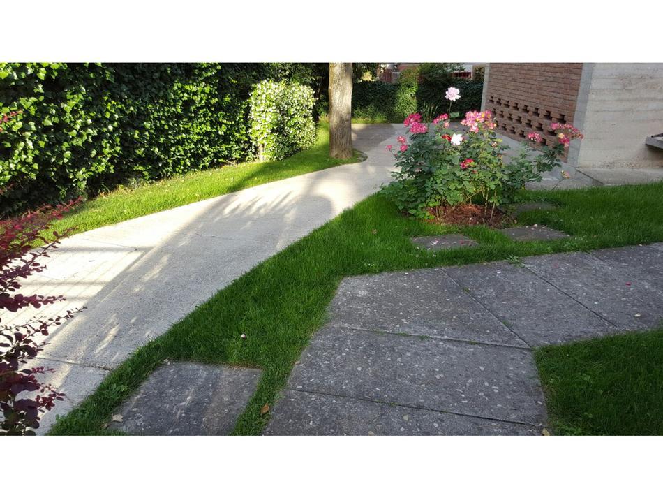Realizzazione prati e giardini