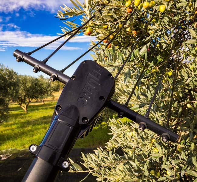 Olivion agevolatore per la raccolta delle olive