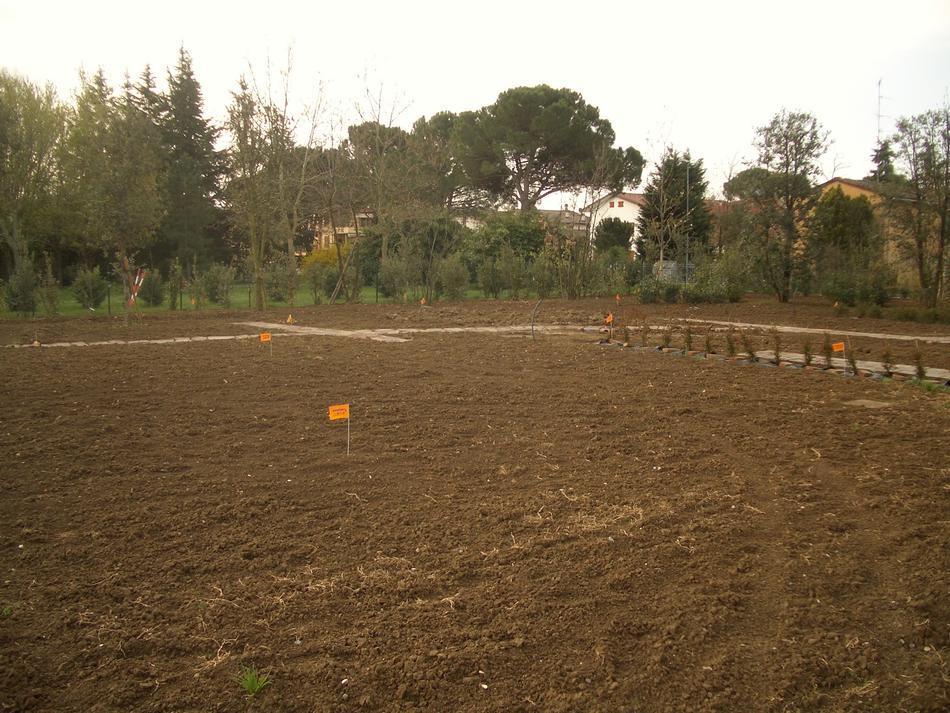 Preparazione di un terreno per l'installazione di un impianto di irrigazione a scomparsa