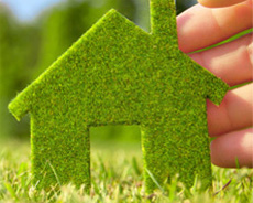 Ecologia e Verde Ornamentale