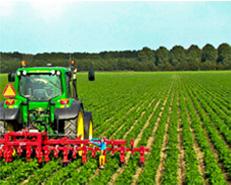Servizi all'azienda agricola